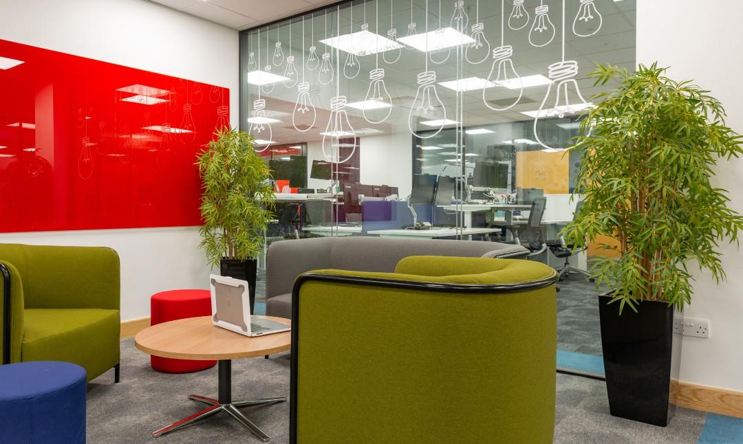 Limelight Media Cork | Office Branding | PR agency, Branding, Advertising,  Cork